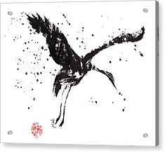Dancing Crane Acrylic Print by Oiyee At Oystudio