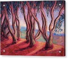 Dancing Eucalyptus Acrylic Print by Karin  Leonard