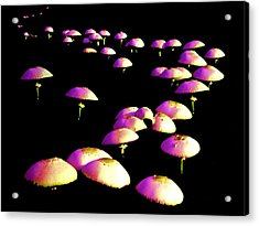 Dancing In The Dark Acrylic Print by John Foote