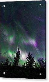 Acrylic Print featuring the photograph Dancing Lights by Dan Jurak