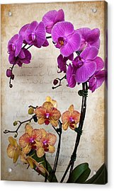 Dancing Orchids Acrylic Print