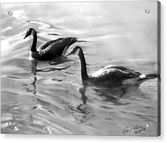 Dancing Reflections Acrylic Print