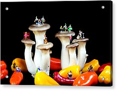 Dancing Show On Mushroom Acrylic Print by Paul Ge