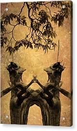 Dancing Trees Acrylic Print by Dave Gordon