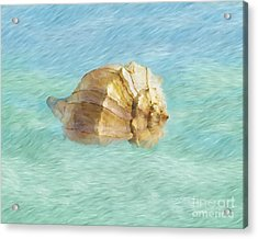 Acrylic Print featuring the photograph Dancing With The Sea by Betty LaRue