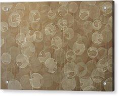 Dandelion Acrylic Print by Jitka Anlaufova