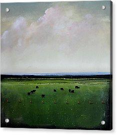 Dandelion Pastures Acrylic Print by Toni Grote