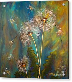 Dandelion Wishes Acrylic Print by Deborha Kerr