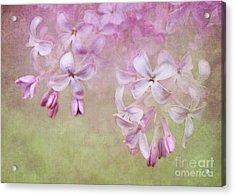 Dangle Me Lilac Acrylic Print