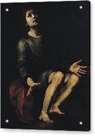 Daniel In The Lions' Den Acrylic Print by Bartolome Esteban Murillo