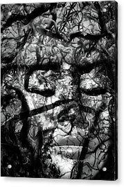 Daphne Sacrifice Acrylic Print by Angelina Vick