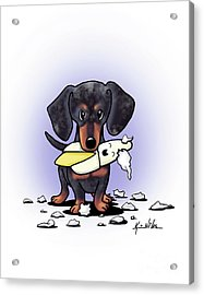 Dapple Doxie Destroyer Acrylic Print by Kim Niles