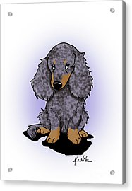 Dapple Doxie Acrylic Print by Kim Niles