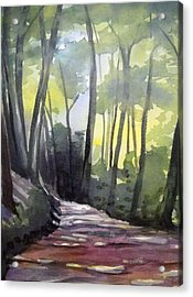 Dappled Dirt Road Acrylic Print