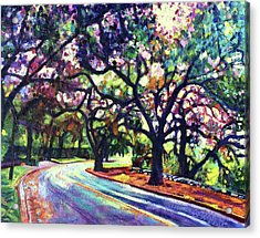 Dappled Lane Through The Arroyo Acrylic Print