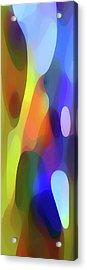 Dappled Light Panoramic Vertical Acrylic Print by Amy Vangsgard