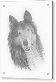 Darby  Acrylic Print