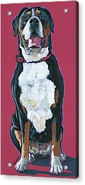 Acrylic Print featuring the painting Darby by Nadi Spencer