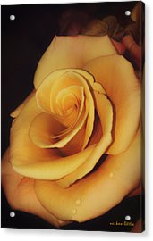 Dark And Golden Acrylic Print