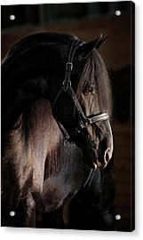 Dark Beauty Acrylic Print