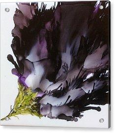 Dark Beauty Acrylic Print