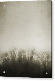 Dark Foggy Wood Acrylic Print by Scott Norris
