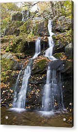 Dark Hollow Falls Shenandoah National Park Acrylic Print by Pierre Leclerc Photography