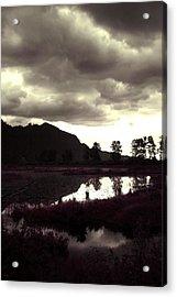 Dark Lake Acrylic Print by Liz Towers