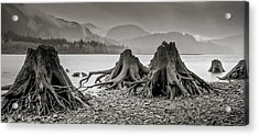 Dark Lake Acrylic Print