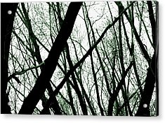 Dark Limbs Acrylic Print