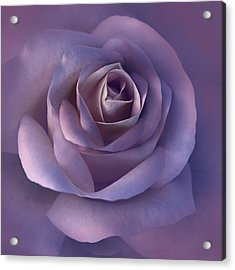 Dark Plum Rose Flower Acrylic Print by Jennie Marie Schell