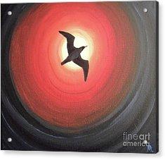 Dark Seagull Acrylic Print by Melina Mel P