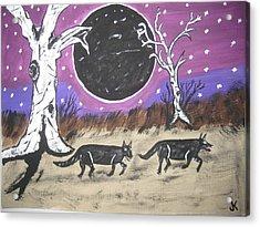 Dark Side Of The Moon Acrylic Print by Jeffrey Koss