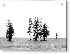Dark Sound Acrylic Print by Angela DiPietro