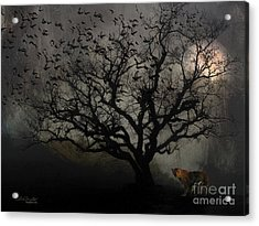 Dark Valley Acrylic Print by Chris Armytage