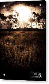 Dark Wetland Sunset Scene Acrylic Print by Jorgo Photography - Wall Art Gallery
