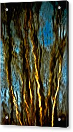 Dark Wood Acrylic Print by Gillis Cone