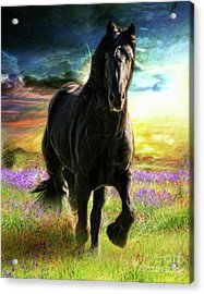 Acrylic Print featuring the digital art  Darkness Descending by Trudi Simmonds