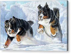 Acrylic Print featuring the painting Dashing Through The Snow by Donna Mulley