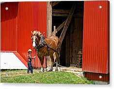 David And Goliath Number Two Acrylic Print by Brian M Lumley