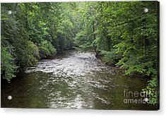 Davidson River In North Carolina Acrylic Print
