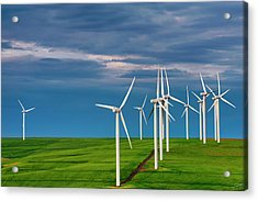 Dawn On The Windfarm Acrylic Print