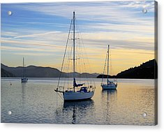Dawn Picton New Zealand Acrylic Print by Barry Culling