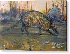 Dawn Run Acrylic Print by Donald Maier