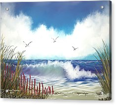 Day At The Beach Acrylic Print by Harry Dusenberg