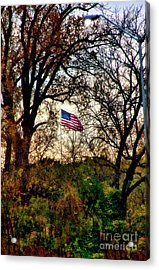 Day Is Done Acrylic Print by Joan Bertucci
