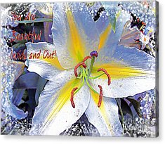 Day Lily Beauty Acrylic Print