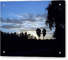 Acrylic Print featuring the photograph Daybreak In Florida by Frederic Kohli
