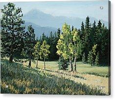 Daybreak Acrylic Print by Mary Giacomini