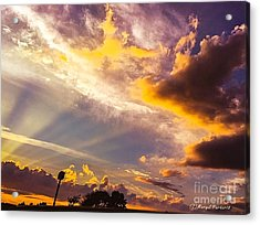 Daybreak Acrylic Print by MaryLee Parker
